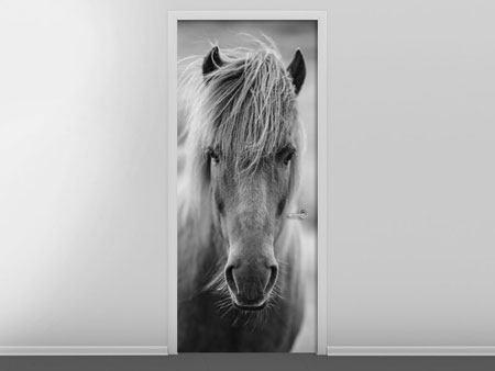 Fein Pferd Verkauf Vertragsvorlage Bilder - Beispiel Anschreiben für ...