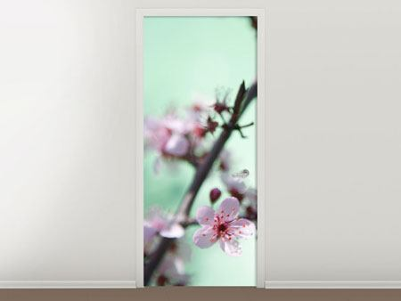 Door Mural Beautiful Japanese Cherry Blossom