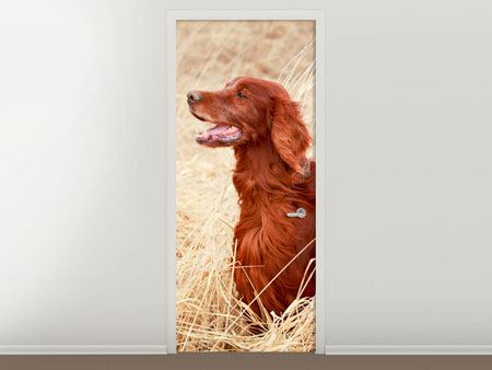Door Mural Irish Red Setter