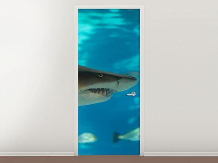 Door Mural The Shark