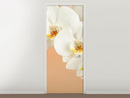 Door Mural White Orchid Flowers