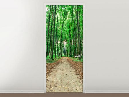 Door Mural Pine Forests