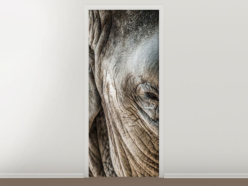 Door Mural Close Up Elephant