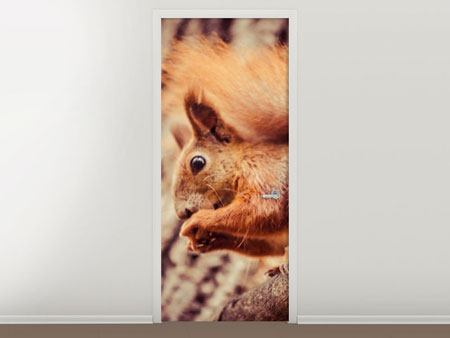 Door Mural Squirrel