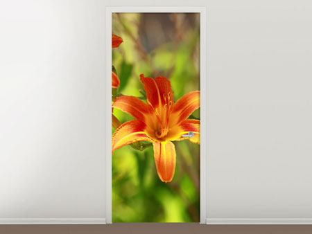 Door Mural Lilies In Nature