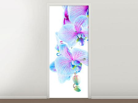 Door Mural Orchid Butterfly