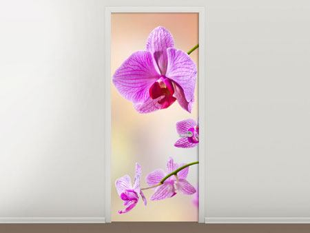 Door Mural Romantic Orchids