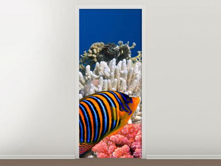 Door Mural Dive With The Fishes