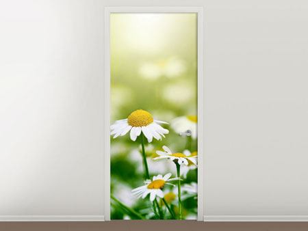 Door Mural The Daisy