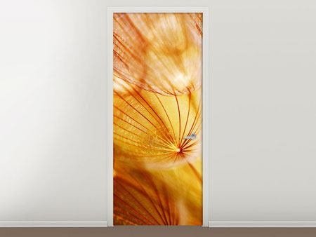 Door Mural Close Up Dandelion In Light