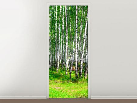 Door Mural The Birch Forest In Summer