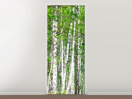Door Mural The Birch Forest