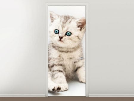 Door Mural Little Kitten