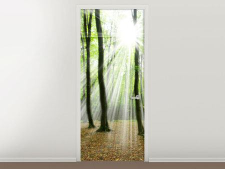 Door Mural Magic Light In The Trees