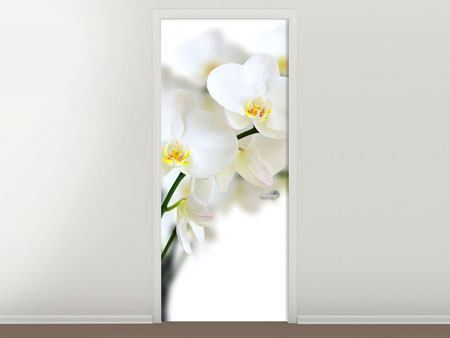 Door Mural White Orchids