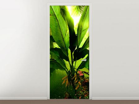 Door Mural Sunrise In The Rainforest