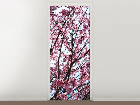 Door Mural Japanese Cherry Blossom