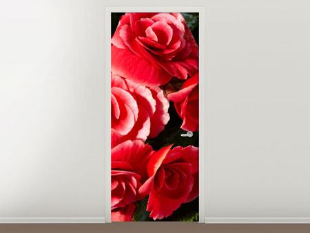 Door Mural Red Rose