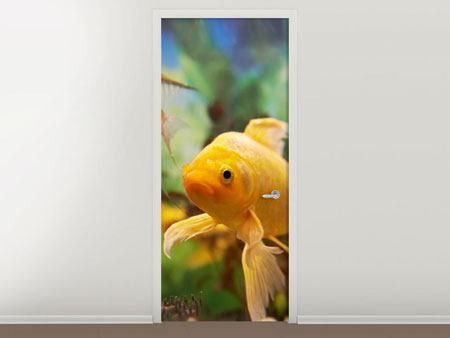 Door Mural Colorful Fish