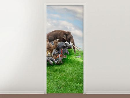 Door Mural Ready For Noah's Ark