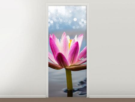 Door Mural Lotus In The Morning Dew