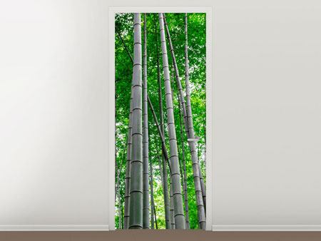 Door Mural Bamboo Forest