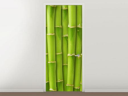 Door Mural Bamboo Wall