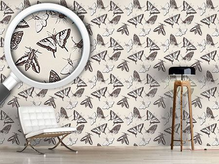 Design Wallpaper Butterflies And Moths