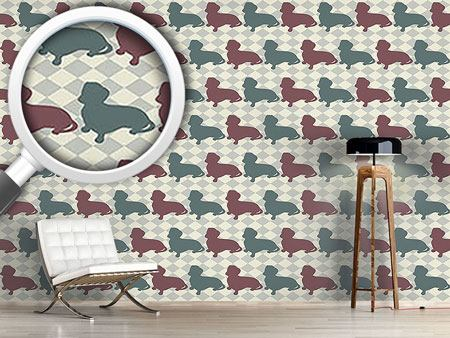 Design Wallpaper Dachshund Check Mate