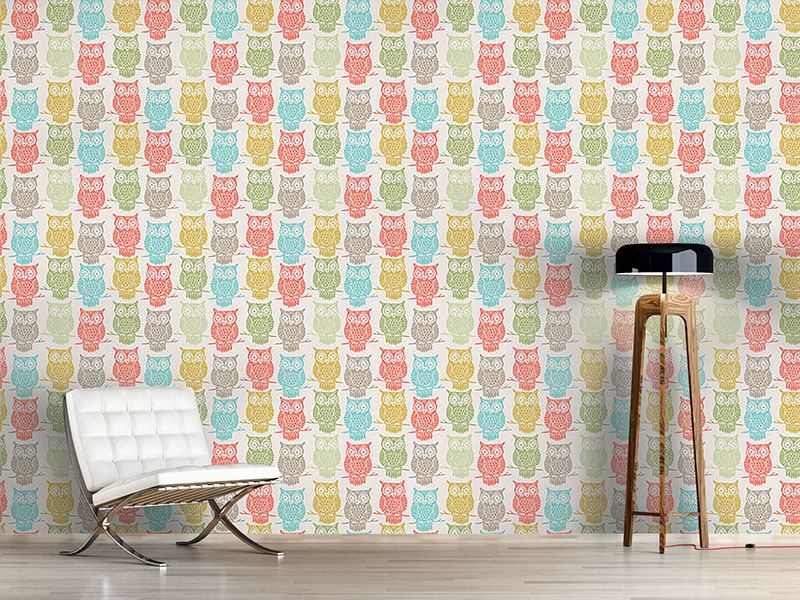 Design Wallpaper Colored Owls Look Out