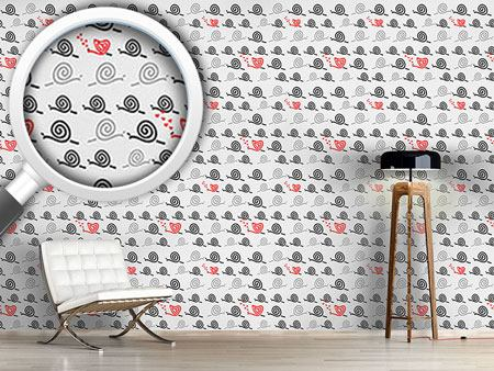 Design Wallpaper Snails Are Able To Love Too