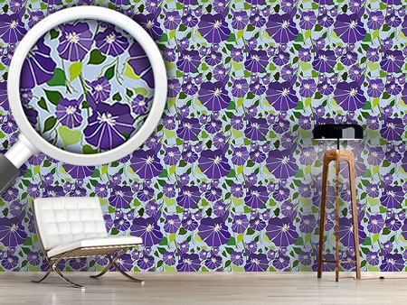 Design Wallpaper Morning Glory