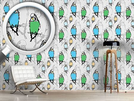 Design Wallpaper Budgies
