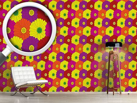 Design Wallpaper Gerbera