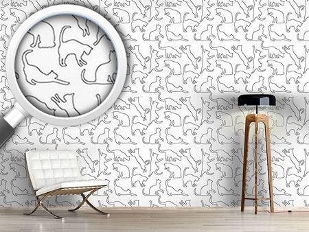 Design Wallpaper Playing Cats