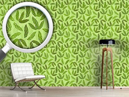 Design Wallpaper Jungle Feathers