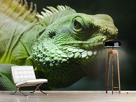 Photo Wallpaper XXL Iguana