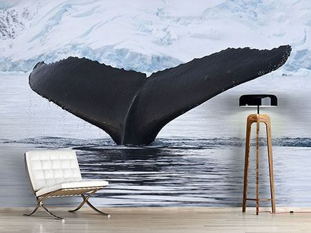 Photo Wallpaper The Humpback Whale