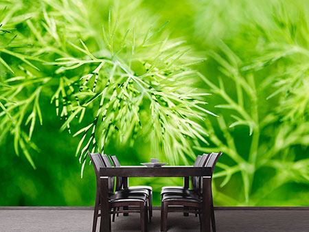 Photo Wallpaper XXL Dill