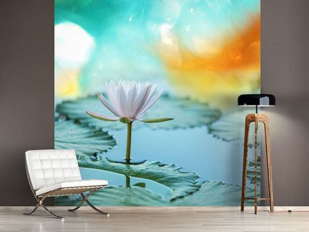 Photo Wallpaper Dreamy Lotus