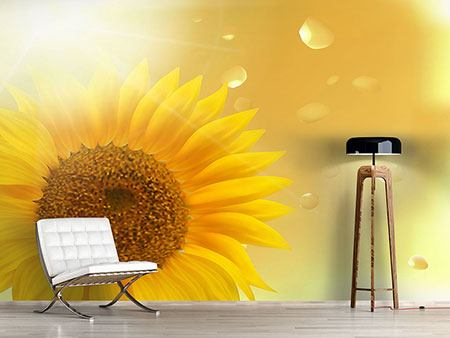 Photo Wallpaper Sunflower in Morning dew