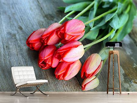 Photo Wallpaper The Red Tulip Bouquet