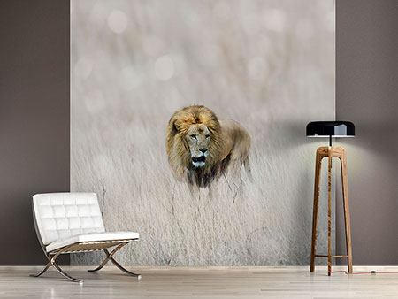 Photo Wallpaper The Lion