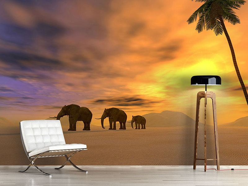 Photo Wallpaper Desert Elephants