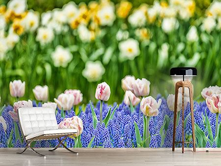 Photo Wallpaper A Garden With Tulips