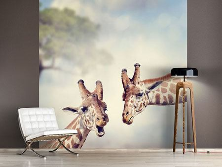 Photo Wallpaper Giraffes