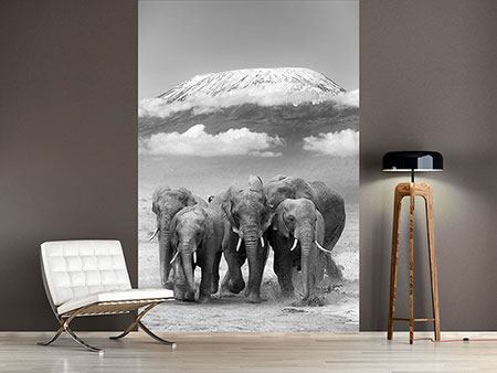 Photo Wallpaper Herd Of Elephants
