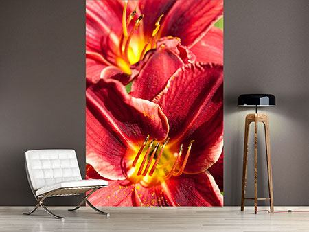 Photo Wallpaper Red Lilies Duo