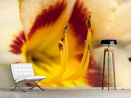 Photo Wallpaper Giant Lily