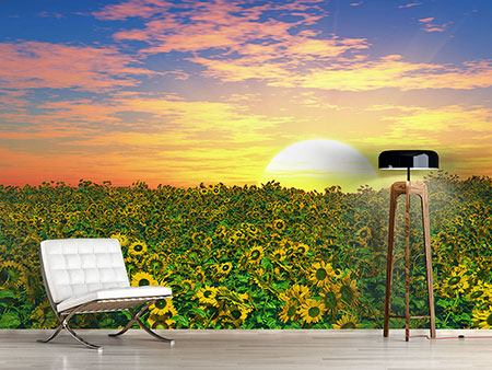 Photo Wallpaper Flowers Panorama At Sunset